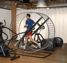Back to Basics - Rat on Spin Wheel
