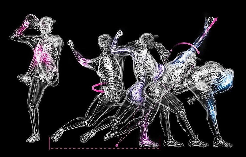 Pitching Anatomy